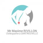 Ostéopathe pour femmes enceintes à Sartrouville